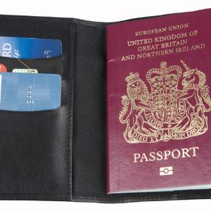 Hampton Leather Passport Wallet Colours