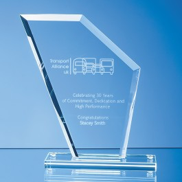 17.5cm x 15.5cm x 1cm Jade Glass Bevelled Edge Wing Award